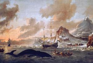 2015-sept-walvisvaart